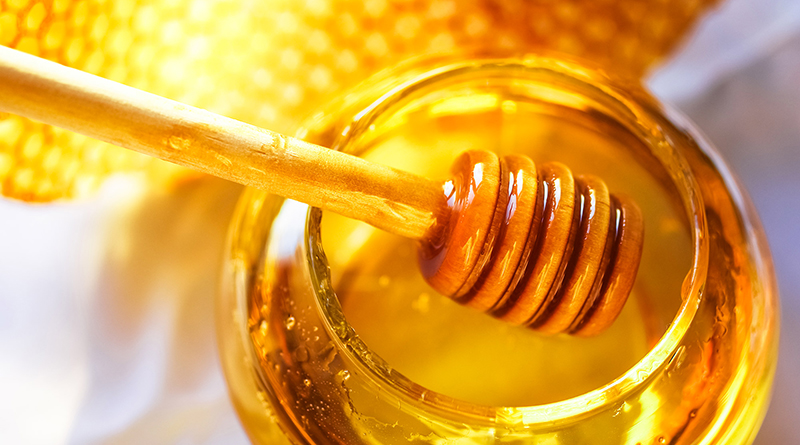 Perils of the Honey Pot: Didier Roux on startup – large corporation relations
