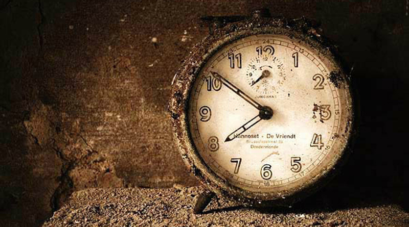 Temps Rose Éternelle